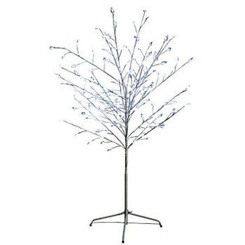 inchiriere copac luminos